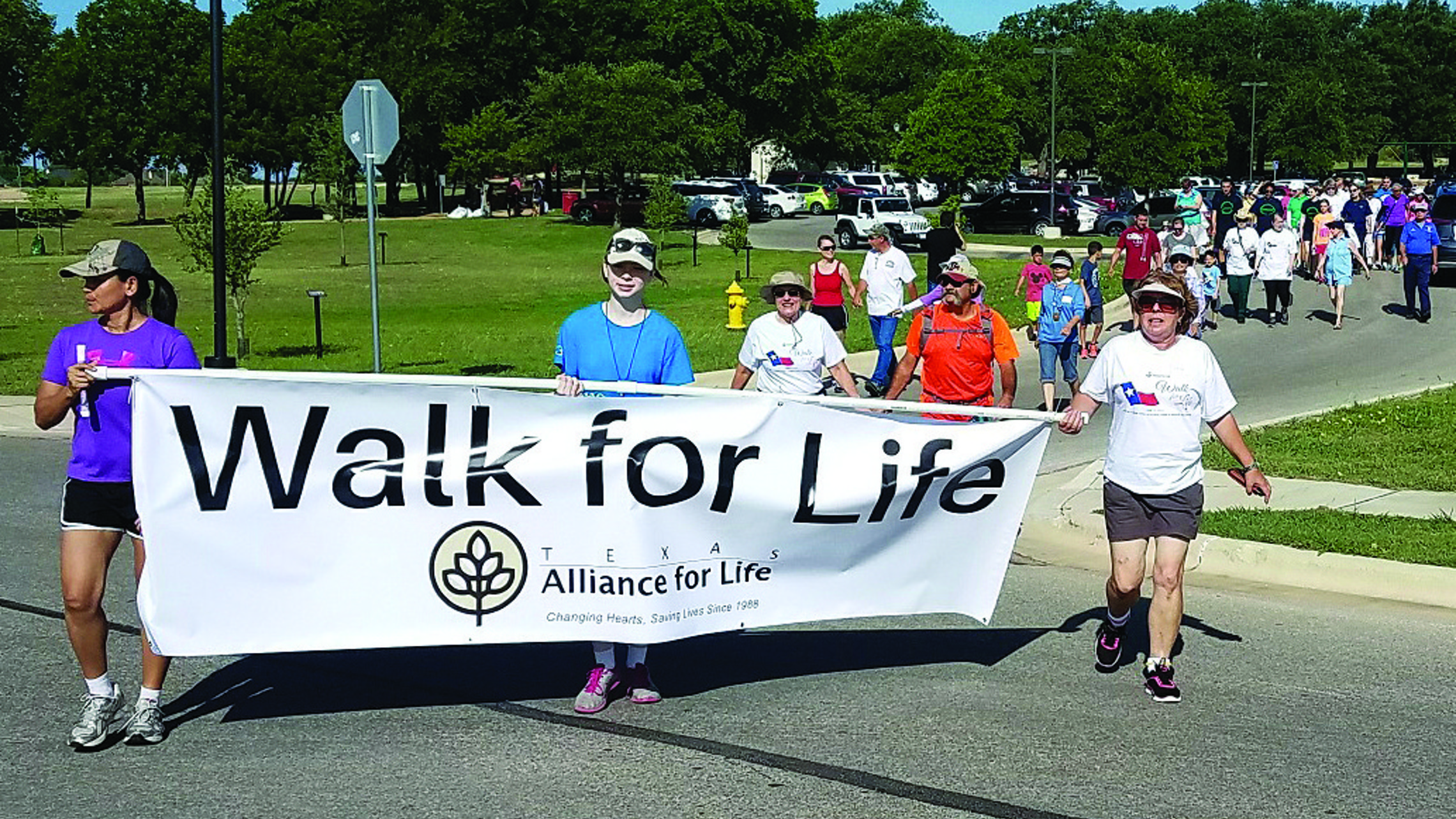 Wfl Banner 0617